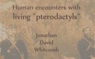 """Modern Pterosaurs - Human encounters with living 'pterodactyls' - by Jonathan Whitcomb"